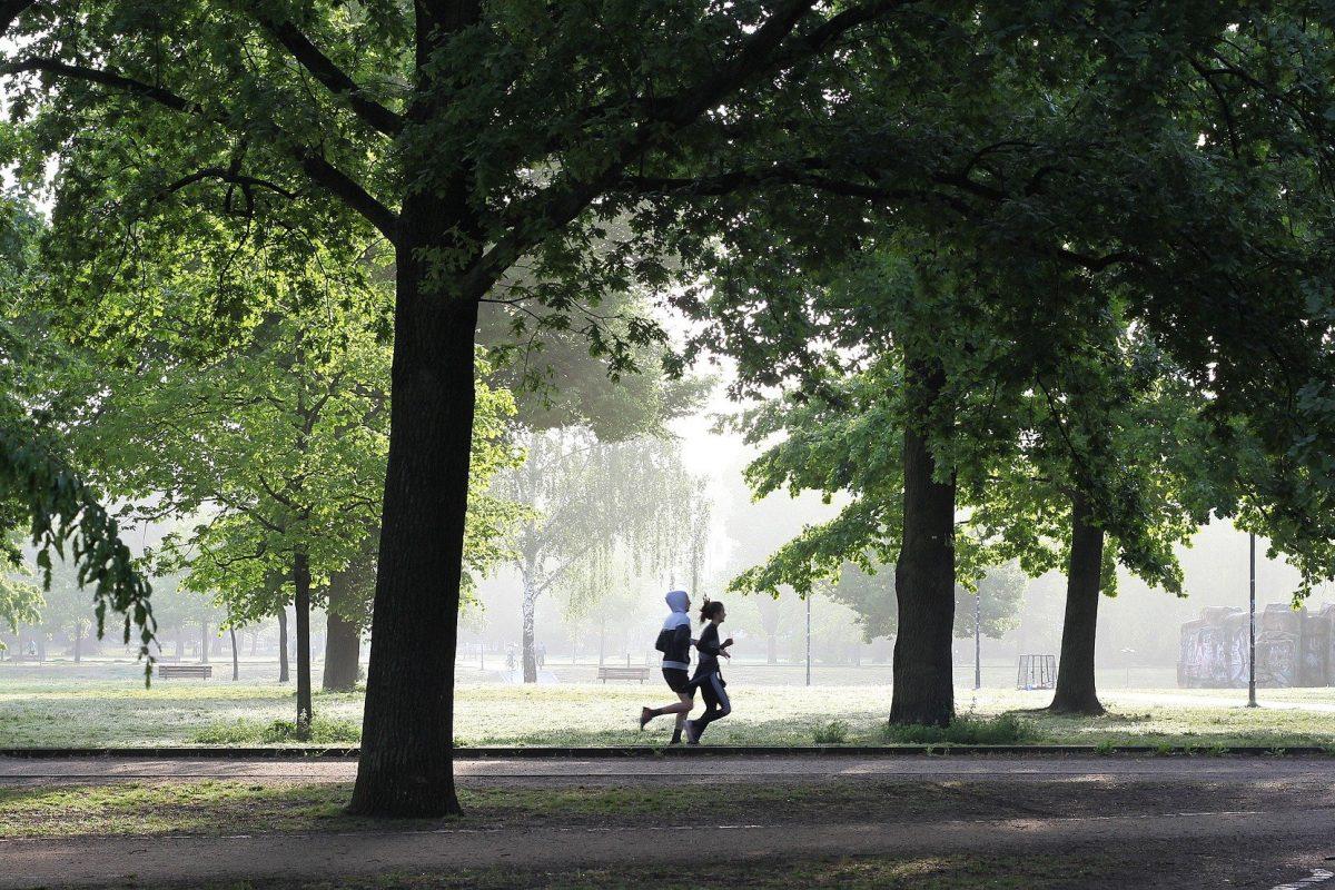 Hoogeveen fitness jogging